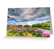 The Wild Lupins of Lindis Pass Greeting Card