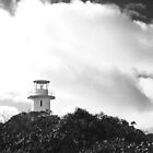 Cape Tourville Light House- Freycinet NP, Tasmania by PepperPotPics