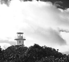 Cape Tourville Light House- Freycinet NP, Tasmania by PepperPotPics