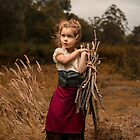 Field Day by Bill Gekas