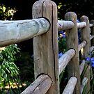 Garden fence by fourthangel