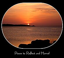 Pause to Reflect and Marvel by Barbny