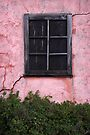 Isolated Window (Vertical) by David Kocherhans