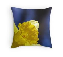 Spring In The Spotlight Throw Pillow