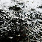 winter's rain drops fall from the sky~ by Brandi Burdick
