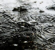 winter's rain drops fall from the sky~ by Brandi Burdick