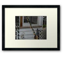 New born Praying Mantis's Framed Print