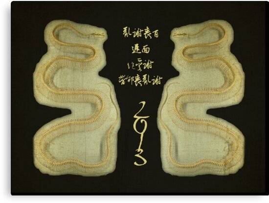 Chinese New Year - Year of the Snake 2013 by MotherNature