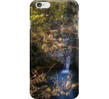 Twin Falls iPhone Case/Skin