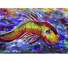Lucky fish Photographic Print