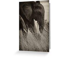 Protector- Masai Mara Kenya Greeting Card