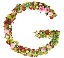 Capital Letter G Part of a set of letters, Numbers and symbols by PhotoStock-Isra