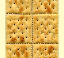 Saltine Crackers by CreatingRayne