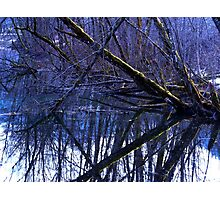Color Experiment Photographic Print
