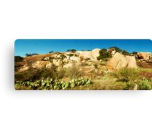 Enchanted Rock State Natural Area Canvas Print