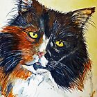 Calico Cat by Bine