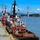 Fraser River Tugs by Yukondick