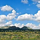 Spring on New Mexico High Plains by Thomas Barker-Detwiler