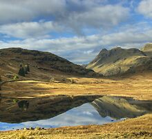 Blea Tarn by Jamie  Green