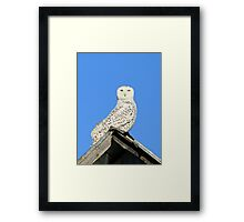 Clear day for a descent from heaven Framed Print