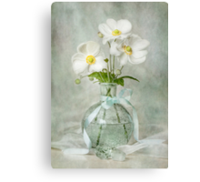 Anemone allure Canvas Print