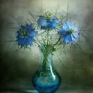 Love in a mist by Mandy Disher