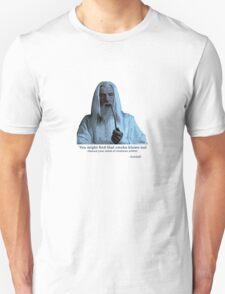 Gandalf - Tee T-Shirt