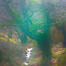 The Dingley Dell of Sugar Loaf Mountain by SwampDogPhoto