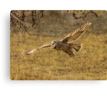 HUNTING GROUNDS Canvas Print