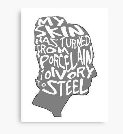 porcelain ivory steel Canvas Print