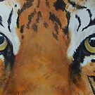 Tiger-The Last Stare-TigerTLS-001 by Pat - Pat Bullen-Whatling Gallery