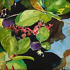 Salal by Sally Griffin