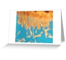 Brush Painted Greeting Card