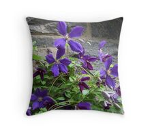 Purple Petals On The Vine - Clematis flowers Throw Pillow