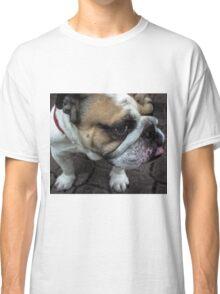 Dog Close Up Classic T-Shirt