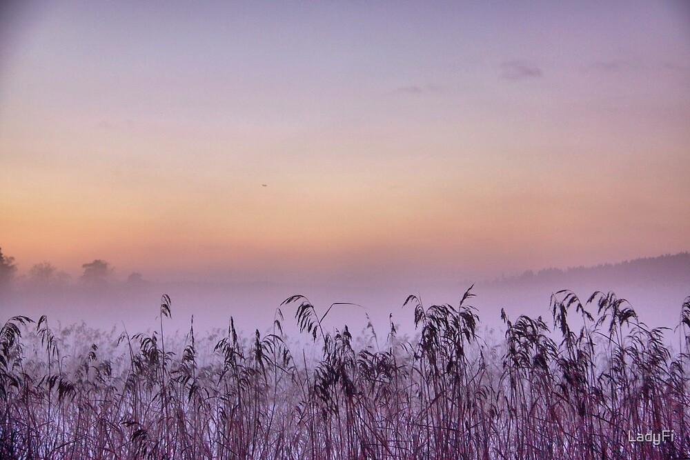 Mist rising by LadyFi