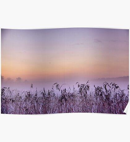 Mist rising Poster