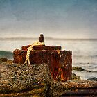 &quot; Coastal Relics &quot; by Heather Thorning