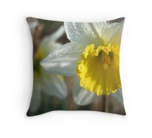 Daffodil and Dew- our garden Throw Pillow