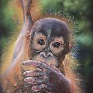 No Tree, No Me (Baby orangutan) by Geraldinesart