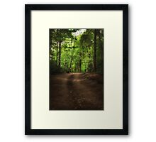 Great Heads Wood Roundhay Park (HDR) Framed Print