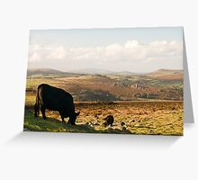 The view from Haytor Rocks Greeting Card