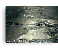 Contrast on Ice - III Canvas Print
