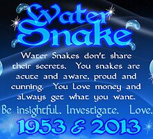 Chinese Zodiac water snake 1953 & 2013  by Valxart