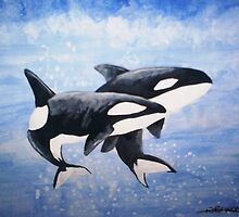 Orcas by tripsyprime8