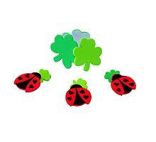 lucky Ladybugs Photographic Print