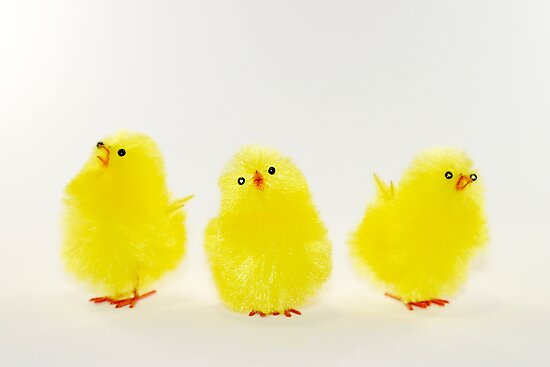 Chicks by Henrik Lehnerer