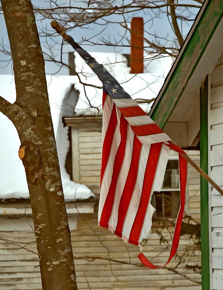 Daddy Patriotism, Round Pond Maine by Dave  Higgins