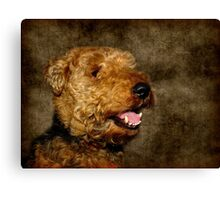 High level of cuddliness... Canvas Print