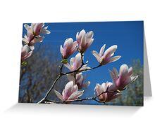 Tulip tree Greeting Card
